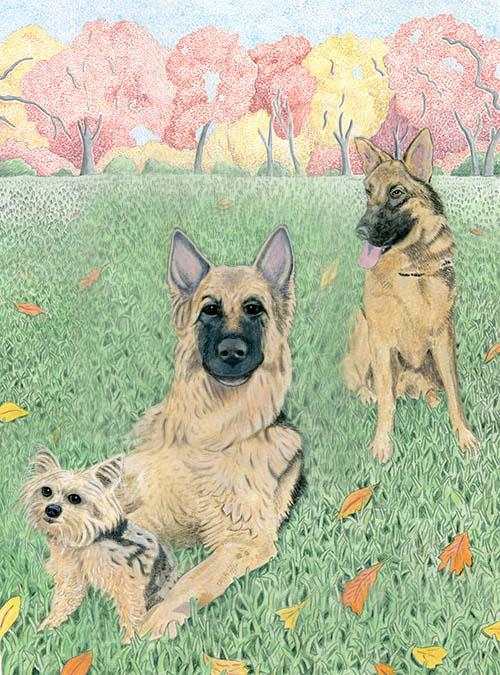 Lucy,Cosmo,Dago