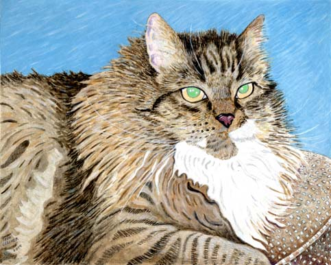 Custom Cat Portrait: Cody Cat
