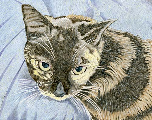 Custom Cat Portrait: Little Jenny