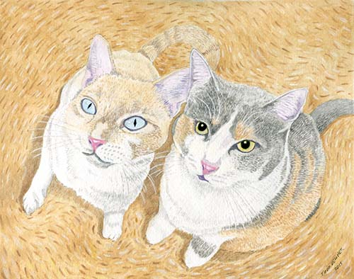 Custom Cat Portrait: Peruz & Hodge Podge