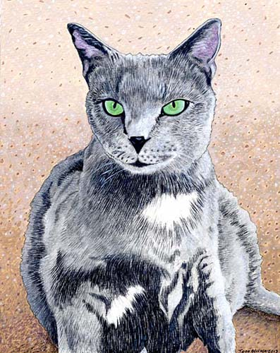 Custom Cat Portrait: Smokey
